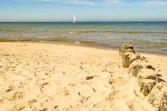 Plage de la mer baltique, Pologne avec des aines Photo libre de droits