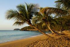 Plage de la Perle dans Deshaies, Guadeloupe Photographie stock