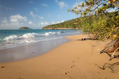 Plage de la Perle - Guadeloupe, Caribbean. Orange sand and crushing wave at `Plage de la Perle` - Perl Beach in western part of Guadeloupe island, Caribbean stock image