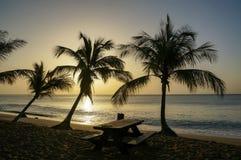 Plage de la Perle i Deshaies, Guadeloupe Royaltyfria Foton