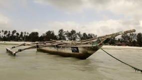 Plage de la Tanzanie banque de vidéos