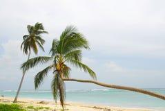 Plage de Macao - R. Dominicana Photos stock