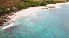 Plage de Makua sur l'île d'Oahu dans le bourdon d'Hawaï banque de vidéos