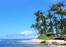Plage de Maui, Hawaï Photographie stock