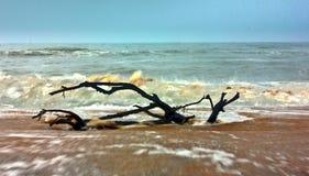 Plage de mer Images libres de droits