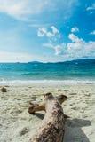 Plage de mer avec du bois à l'île de Lipe en Thaïlande photographie stock