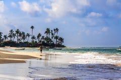 Plage de Moragalla au matin, Beruwala, Sri Lanka image stock