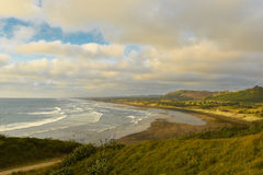 Plage de Muriwai, côte occidentale de région d'Auckland, Nouvelle-Zélande Photo stock