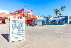 Plage de muscle en plage de Venise Photographie stock libre de droits