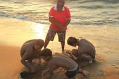 Plage de Negombo en Sir Lanka Image libre de droits