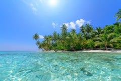 Plage de palmier Images libres de droits