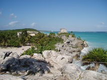 Plage de paradis de Tulum Photo stock