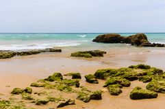 Plage de Portimao dans Algarve, Portugal Photos stock