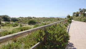 Plage de promenade le long de la dune de sable Image stock