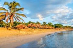 Plage de Rancho Luna la Caraïbe avec des paumes et des parapluies de paille sur le rivage, Cienfuegos, Cuba photos stock