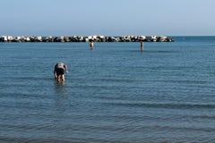 Plage de Rimini, Italie Photos libres de droits