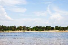 Plage de rivière photo stock