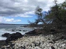 Plage de roche de volcan photos libres de droits