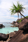 Plage de roches, îles de Similan, Thaïlande Photos libres de droits