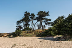 Plage de sable de Fort Bragg, la Californie Photos libres de droits