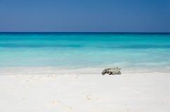 Plage de sable et eau de mer tropicales Image libre de droits