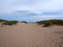 Plage de sables, forêt de Tentsmuir, Tayport Photographie stock libre de droits
