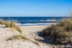 Plage de Sandbridge en Virginia Beach, la Virginie avec l'herbe sur des dunes Photos stock