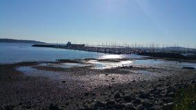 Plage de Seattle de marée basse Images libres de droits