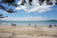 Plage de Takapuna Photos stock
