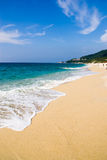 Plage de tortue, Japon Photographie stock