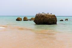 Plage de Tres Castelos, Portimao, Algarve, Portugal photos libres de droits