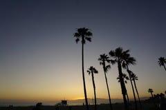 Plage de Venise, Los Angeles, la Californie Etats-Unis photo stock