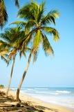 Plage des Caraïbes photos stock
