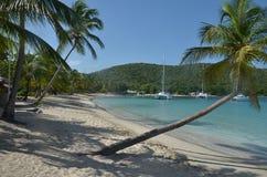 Plage des Caraïbes avec les paumes et le bateau en pente image libre de droits