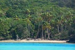 Plage des Fidji Photos stock