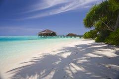 Plage des Maldives images libres de droits