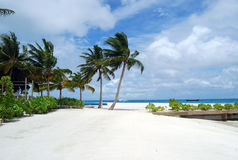 Plage des Maldives Images stock