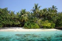 Plage des Maldives Photo libre de droits