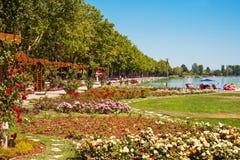 Plage du Lac Balaton image libre de droits