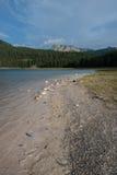 Plage du lac noir, Durmitor, Monténégro Image stock
