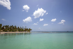 Plage du Tobago Photos libres de droits