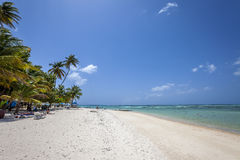 Plage du Tobago photographie stock