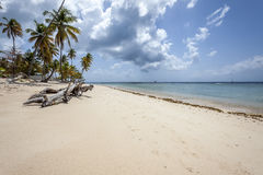 Plage du Tobago photo stock