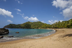 Plage du Tobago photos stock