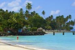 Plage du Tobago, des Caraïbes Images libres de droits