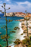 Plage Dubrovnik Croatie de Banje Photographie stock libre de droits