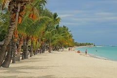 Plage en Îles Maurice images libres de droits