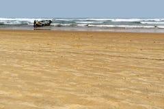 Plage en Mauritanie Photos libres de droits