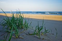 Plage en Pologne Images stock