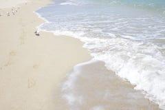 Plage ensoleillée d'îles Photos libres de droits